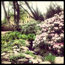 TheSecretCostumier - Lund Botanical Garden
