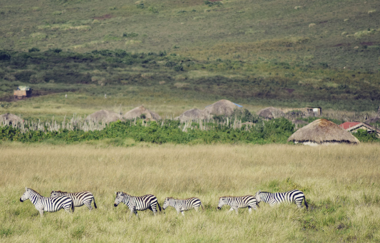 The Secret Costumier - Tanzania - Ngorongoro Crater
